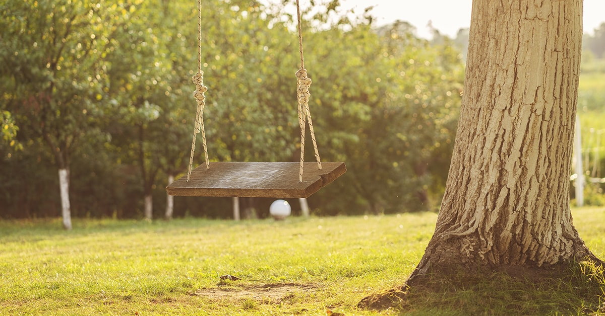 Build a tree swing