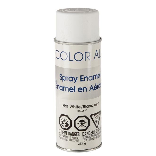 Peinturemail En Arosol Blanc Mat  RnoDpt