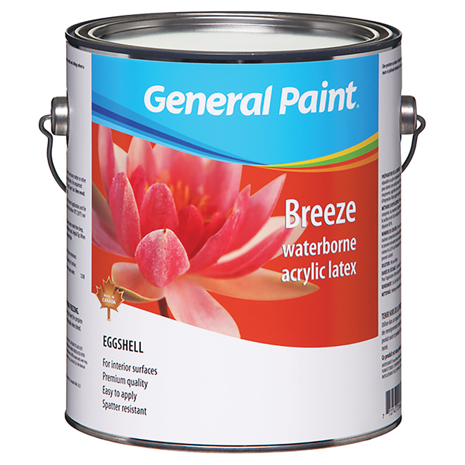 Eggshell Finish Interior Latex Paint