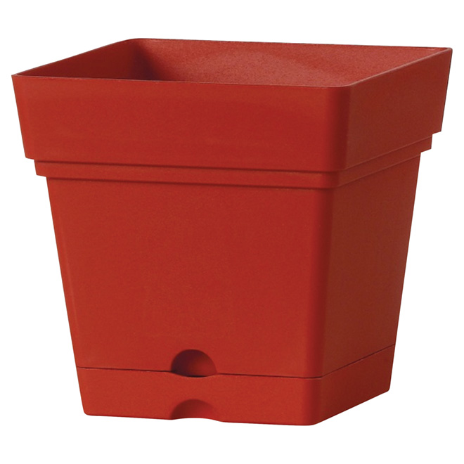 "Square Planter Pot with Saucer - 7"" - Red"