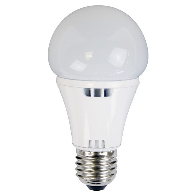 6W LED A19 Non-Dimmable Light Bulb